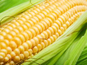 Fresh Ideas for Corn on the Cob